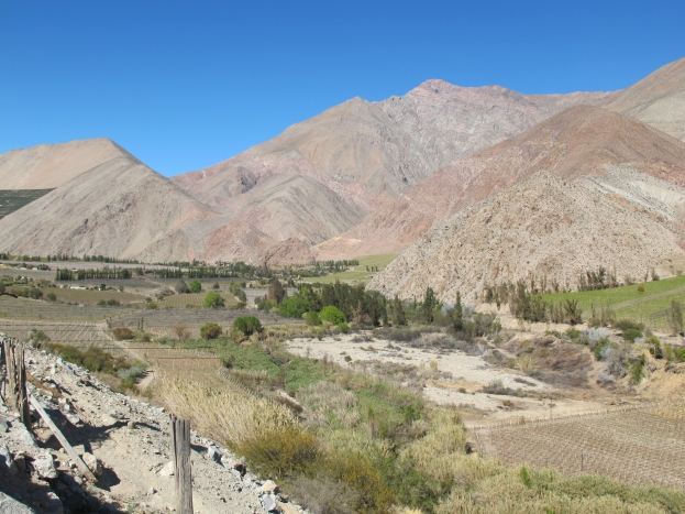 Elqui Valley – Chile's best kept secret